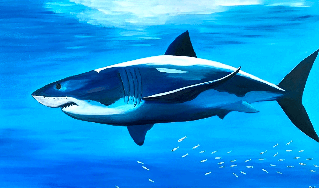 Paintig-with-shark-by-raafpaintings